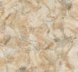 新中源M8817-木化玉微晶石