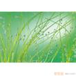 凯蒂纯木浆壁纸KOMAR克洛玛系列KD011【进口】