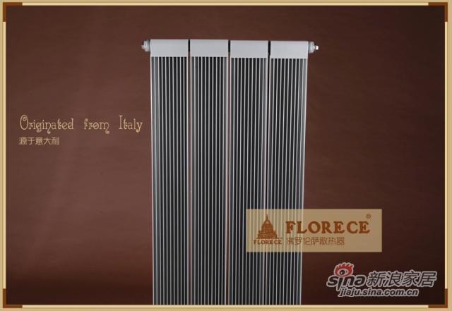 佛罗伦萨铜铝复合双水道系列暖气片散热器家用采暖铜铝耐腐蚀-1