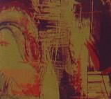 皇冠壁纸金碧辉煌系列88016