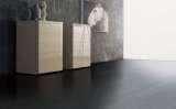 欧典地板设计2009黑紫檀木