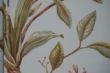 柔然壁纸阿麦瑞A9021355