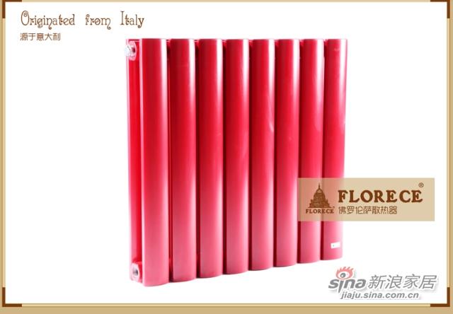 佛罗伦萨 乔托 Giotto 钢制暖气片 家用散热器 暖气 集中供暖-1
