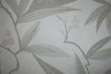 柔然壁纸奎恩塔QUI904