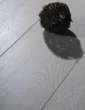 乐迈E-1强化复合地板-欧洲白橡