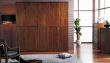 金秋尚品YH-J022-2衣柜门板