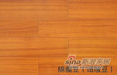 骏牌实木地板腺瘤豆(纽墩豆)