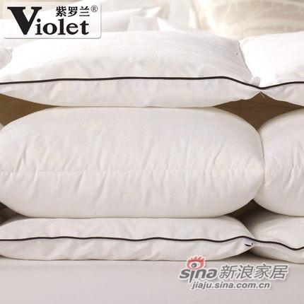 紫罗兰 冬被特价立体加厚超柔羽丝绒-0