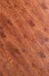 瑞嘉强化复合地板欧罗巴系列鹿特丹/橡木