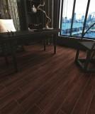 法恩莎瓷砖热带红木