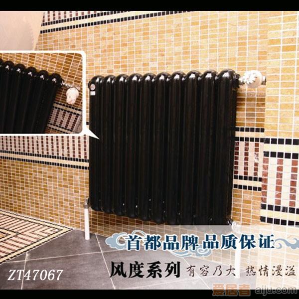 宝隆抗菌散热器/暖气-经典系列-ZT470671