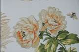 柔然壁纸阿麦瑞A9021365