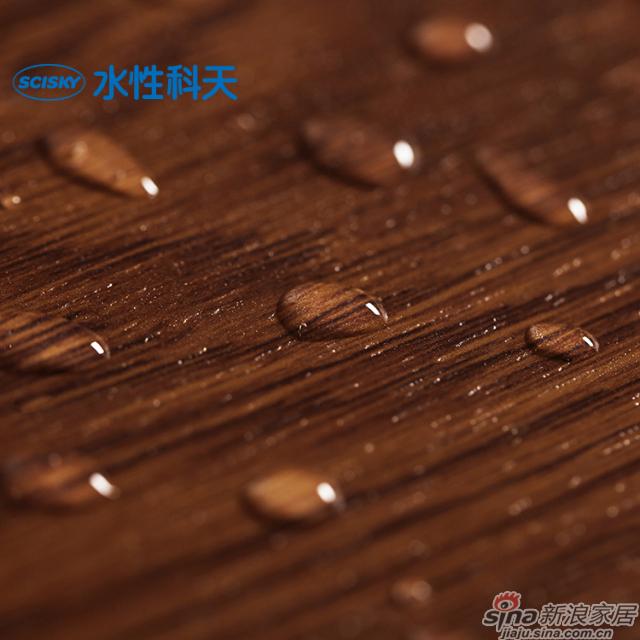 帕彭堡橡木强化地板-5