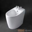 惠达妇洗器B254