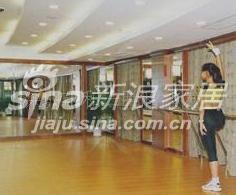 LONSEAL/和一胜舞蹈室用塑胶地板