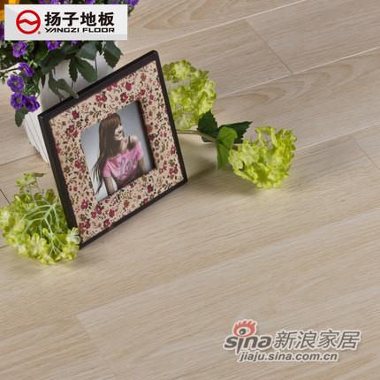 扬子地板强化地板环保静音木地板