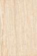 深色银杏木纹
