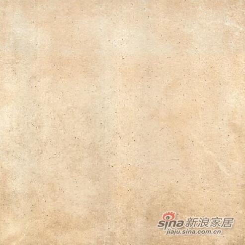 长谷瓷砖陶斯系列-4