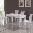 掌上明珠餐桌椅CZ02635-B