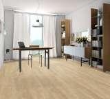 欧典地板设计2009天山雪莲