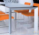 玉庭家具餐桌8355