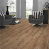德合家ROOMS 强化地板RV803浅棕橡木