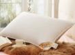 盛宇家纺优质白鸭绒羽绒枕芯