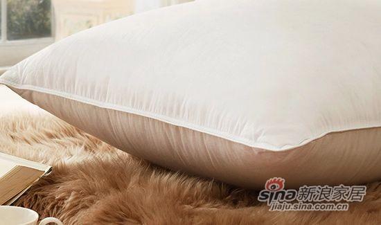 盛宇家纺优质白鸭绒羽绒枕芯-1