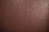 柔然壁纸索普拉S9021561