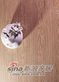 春天地板强化——七彩水晶sj-5