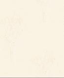 欣旺壁纸cosmo系列白桦林CM4242A