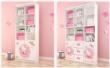 Hello Kitty KT系列二门书柜