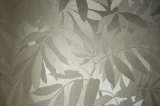 柔然壁纸格兰蒂G9034229