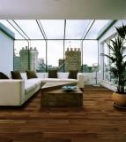 菲林格尔实木复合地板-未来主义鎏金古道