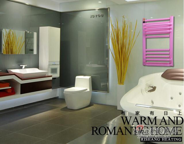 日上暖气片卫浴背篓钢制系列型号:1012-1