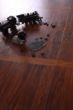 富得利强化地板自由2981