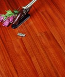 宏鹏地板金铂面防潮实木系列―圆盘豆WFT-09-04A