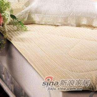 罗莱家纺―床上用品床垫系列-滴塑毯质面料 仿貂绒床垫-0