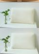 金可儿 天然乳胶枕头