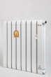 太阳花散热器铜铝复合系列铜帆1800-75NTL