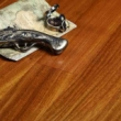 瑞澄地板--圆盘豆RG02011
