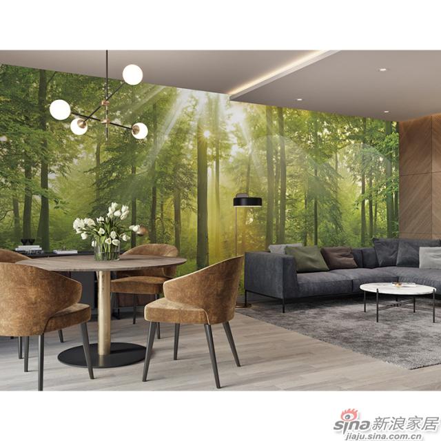光影绿林_茂密树林里阳光倾泻而下图案壁画办公室、大厅壁画背景墙_JCC天洋墙布