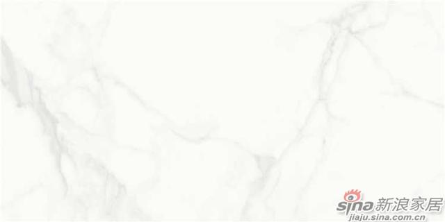 JAY2699814 通体大理石瓷砖-2