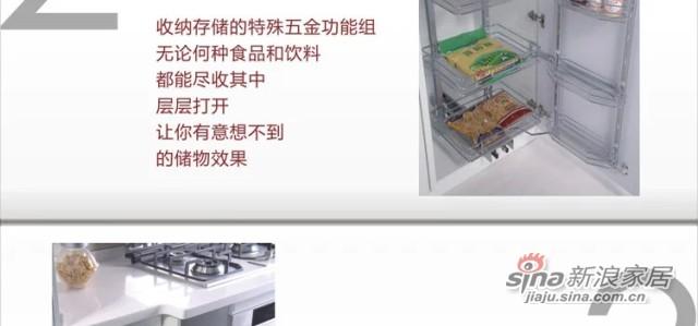 德意丽博橱柜 整体厨房 欧式膜压橱柜-4