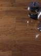 春天地板强化――七彩阳光YG-2