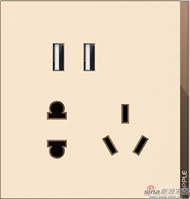 T07双USB五孔插座睿智金