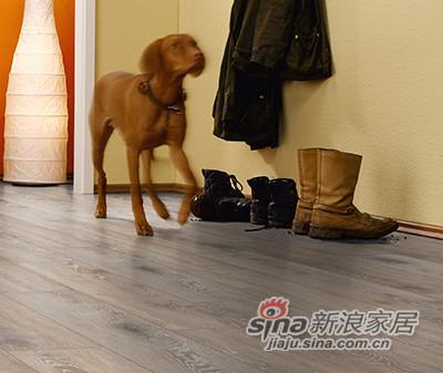 德合家ROOMS 强化地板R1214拉丝泰坦橡木