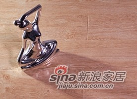 春天地板强化——七彩水晶sj-9