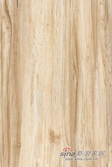 博德木纹砖-现代木系列-0