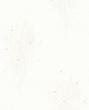 欣旺壁纸cosmo系列白桦林CM4240A
